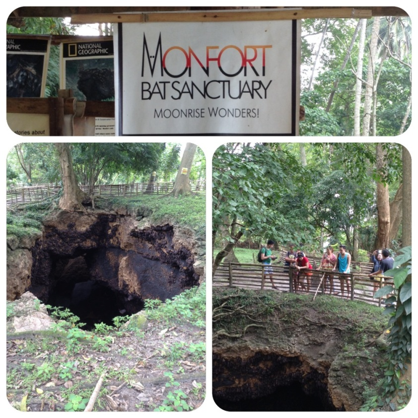 Monfort Bat Sanctuary
